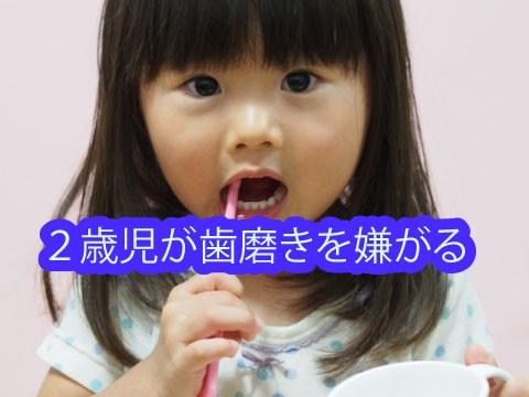 2歳児が歯磨きを嫌がる1