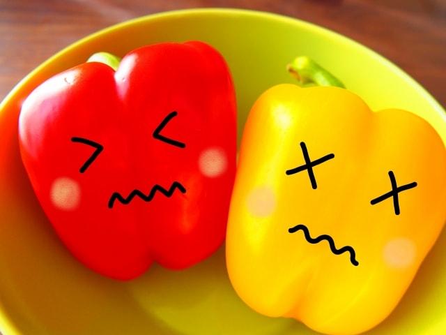 ピーマン 野菜1