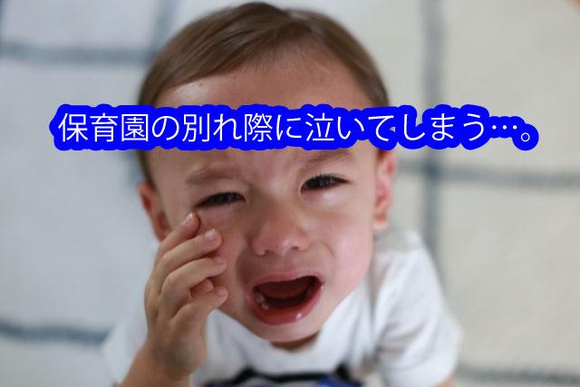 保育園の別れ際に泣いてしまう…