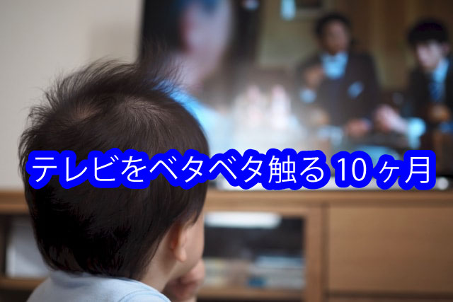 テレビをベタベタ触る10ヶ月