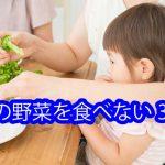 緑の野菜を食べない3歳